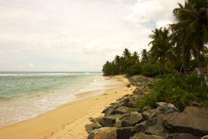 viajar a Sri Lanka en primavera